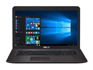 Asus F756UQ-TY145T 43,9 cm (17,3 Zoll) Laptop (Intel Core i5-7200U, 8GB RAM, 128GB SSD, 1TB HDD, NVIDIA GeForce 940MX, DVD-Laufwerk, Win 10 Home) dunkelbraun